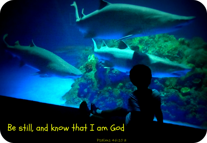 Be still and know I am God (Psalms 46-10)